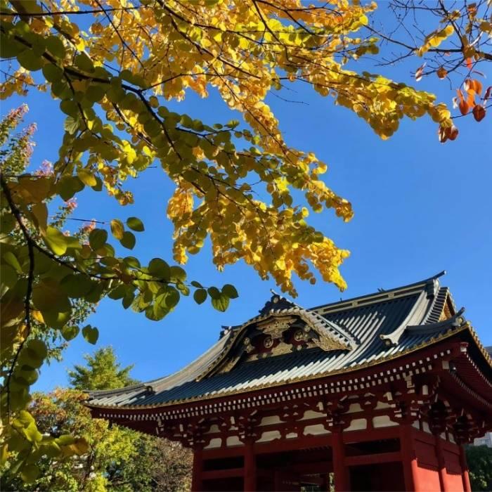 【東京編】お宮参りにおすすめの神社・お寺